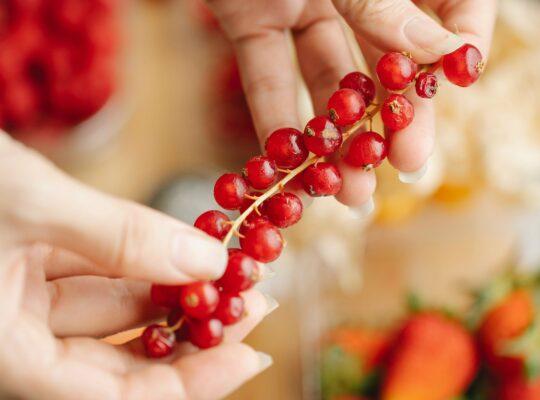 Préparez les fruits
